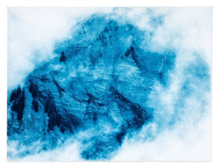 "LIFE IS EVERYWHERE, PRUSSIAN BLUE STUDY 2018 Cyanotype on ARCHES® Platine 57x77cm (22x30"")"