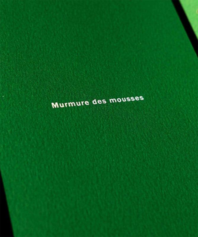 murmure-des-mousses-4